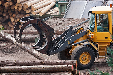 Hydraulic Cylinders for Forestry